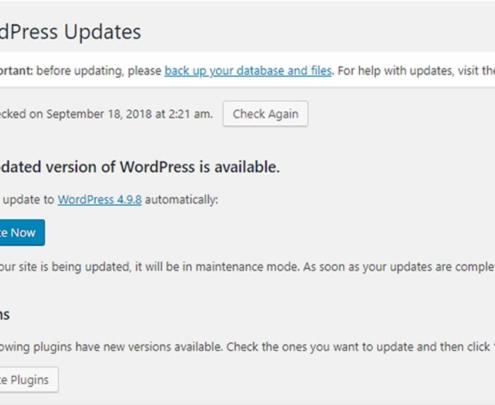 How to do Regular WordPress updates