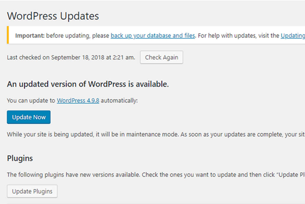 How to do Regular WordPress updates